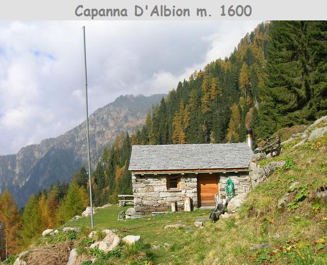 Foto Alp Albion